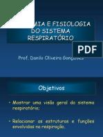 anatomiaefisiologiadosr-121203090311-phpapp02