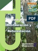 Manual Plantaciones Forestales