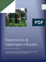 exportacionesparragosfinal-111205073821-phpapp01