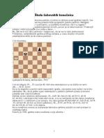 škola šahovskih konanica
