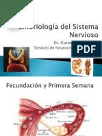 Embriología de Sistema Nervioso.pptx