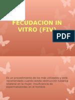 Fecudacion in Vitro (Fiv).