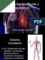 sistemacardiovascularyrespiratorio-100526235712-phpapp02