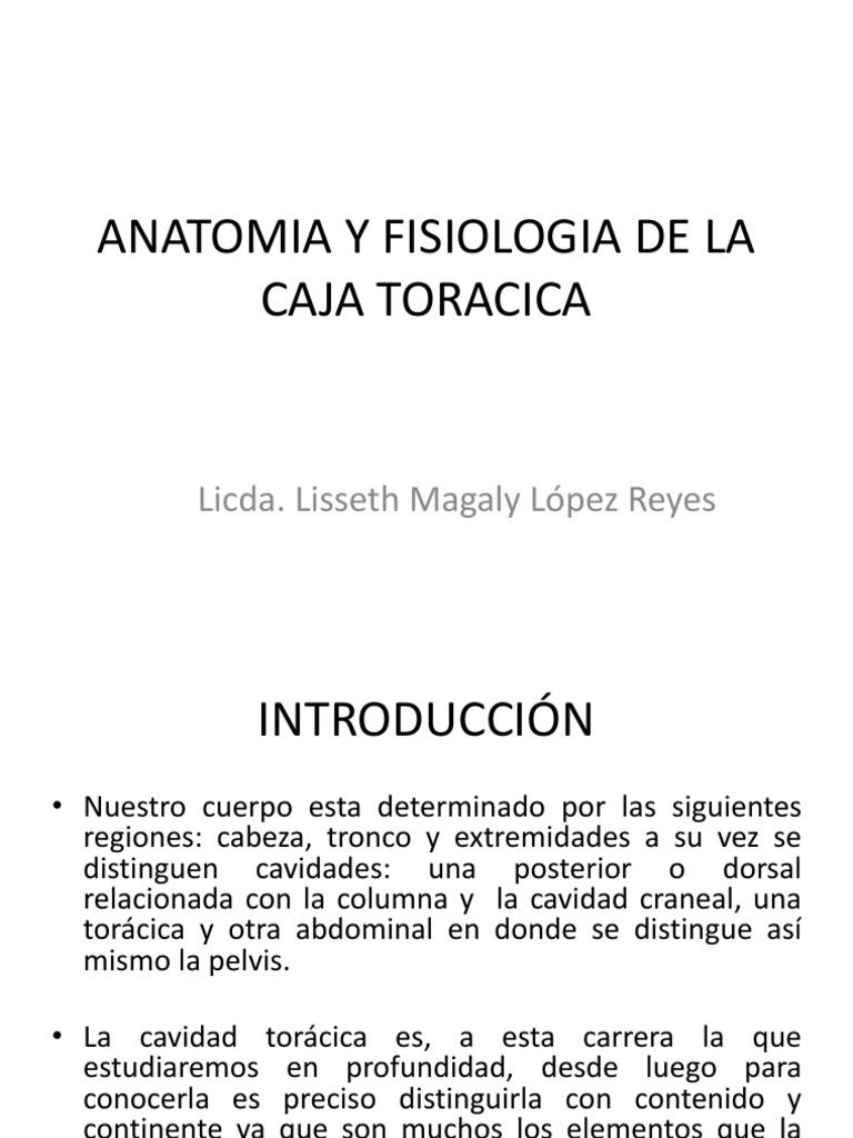 Anatomia y Fisiologia de La Caja Toracica