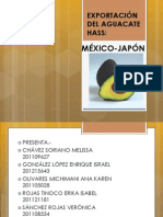 EXPORTACIÓN DEL AGUACATE HASS lista