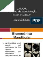 biomecanicamandibular-121116112817-phpapp02