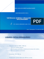 Cisternas, Sistema Ventricular y LCR.pptx