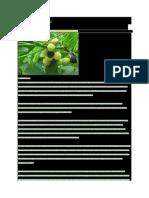 Info Biofuel