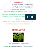 Lembar Balik TB
