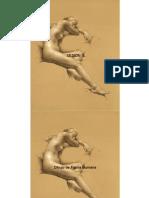 Estructura y Proporcion de La Figura Humana