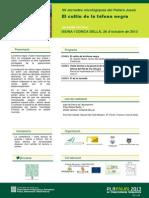 Isona_tòfona_261013_700.pdf