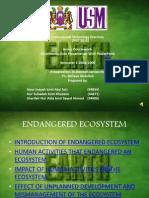 Endangered Ecosystem Kami 3 (1)