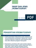 Prinsip Dan Jenis Kromatografi