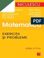 Matematica. Exercitii Si Probleme, Clasa a VI-A-2