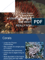 A Starfish Can Wipe Out Reefs