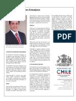 Instituciones Relacionadas Direcmin 2009Comite de Inversiones Extranjeras