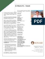 Instituciones Relacionadas Direcmin 2009 Sonami
