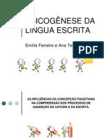 psicogeneses-120909190753-phpapp01