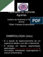 Apresentacao - Folhetos embrionarios