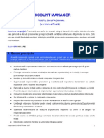 profil ocupational account Manager