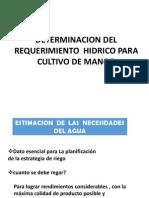 Riegos Req Hidrico (1)