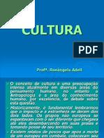 Aula 1 - Cultura