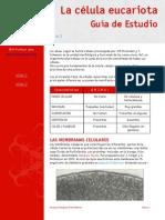 CITOLOGÍA 1 BACH.pdf