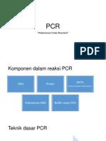 Rekgen PCR