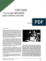 estufas de leña.pdf