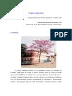 Relato_Projeto_Adolescencia.pdf