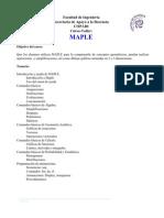 Curso de MAPLE 2013-2