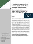 Caracterização da cultura de crack em SP - padrão de uso controlado