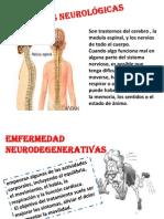 emfermedades neurologicas