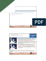 Optimización gestión de equipos_RPascual_2010
