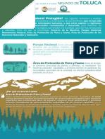 Infografia_NT.pdf