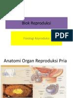 Fisiologi Reproduksi - Dr. Marwito Wijayanto