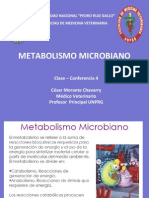 Clase 4 Metabolismo Microbiano.ppt