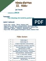 Elettan_anat1_endokrinologia
