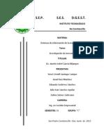 Investigacion de Mercado Salina Cruz 1
