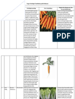 Tugas Deskripsi Tumbuhan Yang Ada Pada Makanan