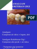 38886062-Amalgam