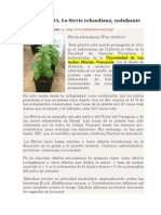 Salud y Vidal a Stevia