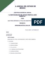 ESCUELA JUDICIAL DEL ESTADO DE MÉXICO, la responsabilidad del estado frente al daño ambiental.