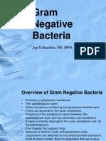 Gram Negative Bacteria New(1)