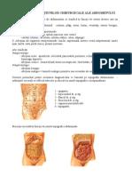 6 - Semiologia abdomenului