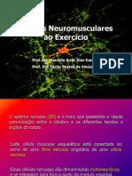 Ajustes Neuromusculares ao Exercício