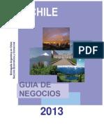 Guia de Negocios Chile 2013