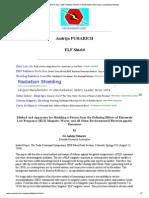 Andrija PUHARICH_ ELF-EMF Pollution Shield (Transformation Into Scalar Longitudinal Waves)