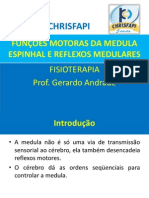 FUNÇÕES MOTORAS DA MEDULA ESPINHAL E REFLEXOS MEDULARES