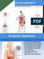 FUNCIÓN DE NUTRICIÓN II